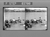 view Giving the buffalo his regular noon-day bath, Manila Bay. 3503 photonegative digital asset: Giving the buffalo his regular noon-day bath, Manila Bay. 3503 photonegative.