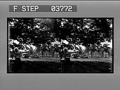 view [Honolulu; horse-drawn wagons on street near Palace. Stereo photonegative.] digital asset: [Honolulu; horse-drawn wagons on street near Palace. Stereo photonegative.]