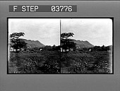 view [Honolulu; view of buildings in lush landscape with mountain ridge in background. Stereo photonegative.] digital asset: [Honolulu; view of buildings in lush landscape with mountain ridge in background. Stereo photonegative.]