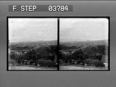 view [Honolulu; overview of residential buildings. Stereo photonegative.] digital asset: [Honolulu; overview of residential buildings. Stereo photonegative.]
