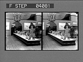 view [Exhibit: Eskimo and dogs] [glass stereoscopic photonegative.] digital asset: [Exhibit: Eskimo and dogs] [glass stereoscopic photonegative.]
