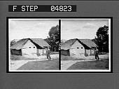 view Native Venezuelan thatched huts. 9021 [interpositive.] digital asset number 1
