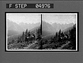view On the trail into Valley of the Ten Peaks, Rocky Mts., Alberta. 9496 [interpositive.] digital asset: On the trail into Valley of the Ten Peaks, Rocky Mts., Alberta. 9496 [interpositive.]