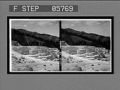 view Minerva Terrace, showing the nearly extinct spring on its summit, Mammoth Hot Springs. [Active no. 12012 : stereo interpositive] digital asset: Minerva Terrace, showing the nearly extinct spring on its summit, Mammoth Hot Springs. [Active no. 12012 : stereo interpositive], 1904.