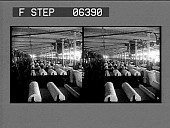 view The lapper room--cotton from feeders is cleaned and rolled. 13807 interpositive digital asset: The lapper room--cotton from feeders is cleaned and rolled. 13807 interpositive.