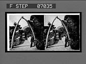 view A picturesque walk in the beautiful Alameda Gardens. 16880 Interpositive digital asset: A picturesque walk in the beautiful Alameda Gardens. 16880 Interpositive.