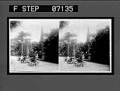 view In the public gardens, Rio de Janeiro, Brazil. 18702 Interpositive digital asset: In the public gardens, Rio de Janeiro, Brazil. 18702 Interpositive.