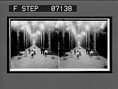 view Avenue of palms in the Botanical Gardens, Rio de Janeiro, Brazil. [Active no. 18703 : stereo interpositive.] digital asset: Avenue of palms in the Botanical Gardens, Rio de Janeiro, Brazil. [Active no. 18703 : stereo interpositive.]
