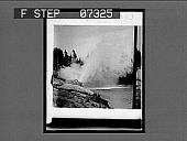 "view [Geyser in action.] ""Western Trip C.W.W. '04"" [on envelope.] [Active no. 293 : interpositive,] digital asset: [Geyser in action.] ""Western Trip C.W.W. '04"" [on envelope.] [Active no. 293 : interpositive,] 1904."