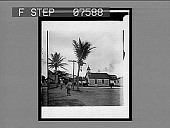 view [Honolulu; low street view with church and horse-drawn wagon.] : 59 Interpositive digital asset: [Honolulu; low street view with church and horse-drawn wagon.] : 59 Interpositive.