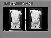view [Sculpture of male torso, front, No. 16 : glass stereo interpositive.] digital asset: [Sculpture of male torso, front, No. 16 : glass stereo interpositive.]