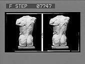 view [Sculpture of male torso, back. No. 16 : glass stereo interpositive.] digital asset: [Sculpture of male torso, back. No. 16 : glass stereo interpositive.]