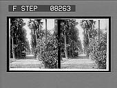 view [Roadway.] 04316 Interpositive digital asset: [Roadway.] 04316 Interpositive.