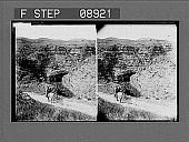 view [Mountains.] 1000 Photonegative digital asset: [Mountains.] 1000 Photonegative.