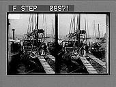 view [Harbor scene.] 1048 Photonegative digital asset: [Harbor scene.] 1048 Photonegative.