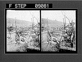 view [Ruins.] 1248 photonegative digital asset number 1