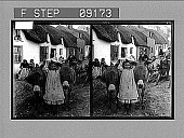 view [Children and cart before row of cottages in Ireland.] 1372 photonegative digital asset: [Children and cart before row of cottages in Ireland.] 1372 photonegative 1905.