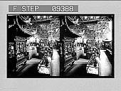view Part of China's beautiful exhibit. [Caption no. 1649 : stereoscopic photonegative,] digital asset: Part of China's beautiful exhibit. [Caption no. 1649 : stereoscopic photonegative,] 1903.