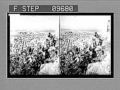 view [Portrait in Greece.] 2109 photonegative digital asset: [Portrait in Greece.] 2109 photonegative 1905