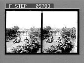 view [Garden in India.] 2214 photonegative digital asset: [Garden in India.] 2214 photonegative 1905.