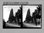 view [Walk with palm trees, tower, figures in saris (?), India.] Active no. AS 2225 : stereo photonegative digital asset: [Walk with palm trees, tower, figures in saris (?), India.] Active no. AS 2225 : stereo photonegative, 1905.