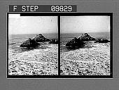 view [Pacific Coast scene.] 2346 photonegative digital asset: [Pacific Coast scene.] 2346 photonegative 1905.
