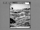 view [River rapids.] 21963 photonegative digital asset number 1