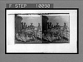 view [Sailors.] 312 Interpositive digital asset: [Sailors.] 312 Interpositive.