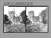 view [Ruins of Muckross Abbey, Killarney, Ireland.] Active no. 567. Stereo photonegative, 1905 digital asset number 1