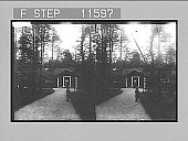 view The little turf-covered cottage in the Woods, Smaland. 970 photonegative 1896 digital asset number 1