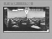 view Wheeling salt to the stacks, salt fields of Solinen. 1219 Photonegative digital asset: Wheeling salt to the stacks, salt fields of Solinen. 1219 Photonegative.