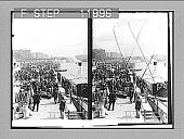 view Marketing in Stettin, quay beside the Oder, looking N.E. down stream. 1318 photonegative 1905 digital asset number 1