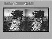 view [Odd rock formation in Grand Canyon.] Photonegative digital asset number 1