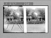view Old Roman ruin, Schonbrunn, Vienna. 1907 Photonegative 1907 digital asset number 1