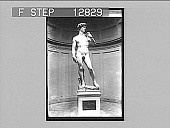 """view Michael Angelo's """"David""""--Academy, Florence, Italy--""""work of his youth, pride of his old age."""" 2045 photonegative 1905 digital asset number 1"""