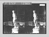 "view Canova's ""Venus""--Pitti Palace Gallery, Florence. 2138 photonegative digital asset: Canova's ""Venus""--Pitti Palace Gallery, Florence. 2138 photonegative 1905."