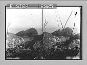 view [Seacoast in Italy.] Photonegative 1896 digital asset number 1