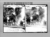 view Ex-President Kruger's home at Pretoria. 2743 photonegative digital asset: Ex-President Kruger's home at Pretoria. 2743 photonegative.