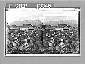 view Girls picking tea on famous plantation at Uji, among the sunny hills of old Japan. [Active no. 3915 : stereo photonegative.] digital asset: Girls picking tea on famous plantation at Uji, among the sunny hills of old Japan. [Active no. 3915 : stereo photonegative.]