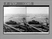 view Castle Garden, the Aquarium, and Liberty Statue (S.W.) from Washington Building. [Active no. 5285 : stereo photonegative.] digital asset: Castle Garden, the Aquarium, and Liberty Statue (S.W.) from Washington Building. [Active no. 5285 : stereo photonegative.]