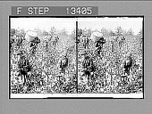 """view """"Away down among the cotton and the coons,"""" La. [sic] [Active no. 5753 : black-and-white stereo photonegative.] digital asset: """"Away down among the cotton and the coons,"""" La. [sic] [Active no. 5753 : black-and-white stereo photonegative.]"""