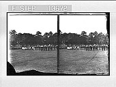 view [Parade in India.] 8636 Photonegative digital asset: [Parade in India.] 8636 Photonegative 1906.