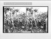 view [Ceremony in India. Active no. 8665 : stereo photonegative,] digital asset: [Ceremony in India. Active no. 8665 : stereo photonegative,] 1906.