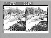 view [Rapids of Moon River in Ontario.] 8862 photonegative digital asset: [Rapids of Moon River in Ontario.] 8862 photonegative 1896.