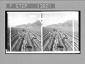 view Planting sugar-cane, Peru. [Active no. 9235 : stereo photonegative.] digital asset: Planting sugar-cane, Peru. [Active no. 9235 : stereo photonegative.]