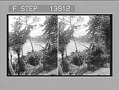 view [River in Panama.] 9373 photonegative digital asset: [River in Panama.] 9373 photonegative 1905.
