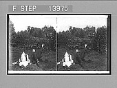 view [Policeman with raised nightstick frightening couple on grass, with man tumbling backward. Active no. 9412. Stereo photonegative] digital asset: [Policeman with raised nightstick frightening couple on grass, with man tumbling backward. Active no. 9412. Stereo photonegative], 1906.