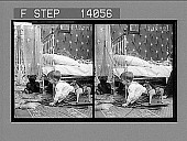 view [Children. Active no. 10066 : black-and-white stereo photonegative,] digital asset: [Children. Active no. 10066 : black-and-white stereo photonegative,] 1908.