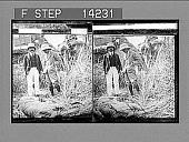 view The dead man-eater, Behar jungle. [Active no. 10536 : photonegative,] digital asset: The dead man-eater, Behar jungle. [Active no. 10536 : photonegative,] 1905.