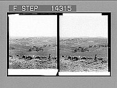 view [Landscape in Palestine.] 10829 Photonegative 1910 digital asset number 1